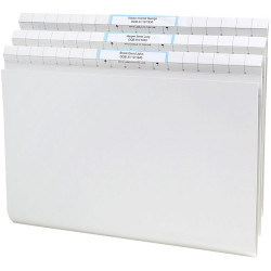 AVERY QUICKVUE FILES F/C, Title Labels H/Duty White